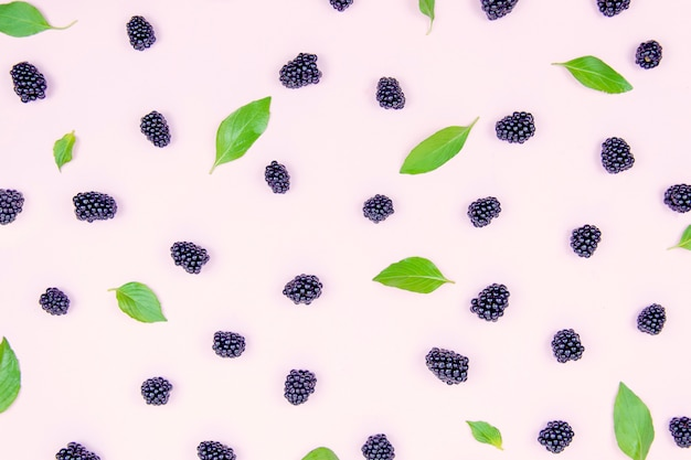 Black delicious blackberries on a peach background with green basil leaves.