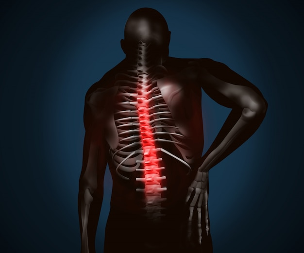 Black digital figure with highlighted back pain