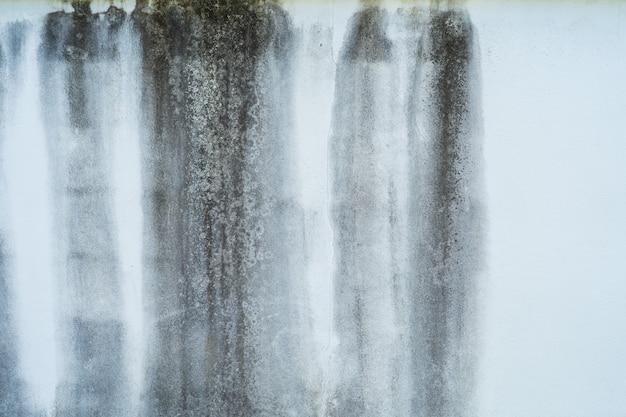 흰색 페인트 콘크리트 벽에 검은 흙