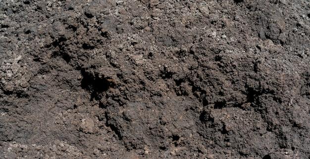 Black fertile land black soil.