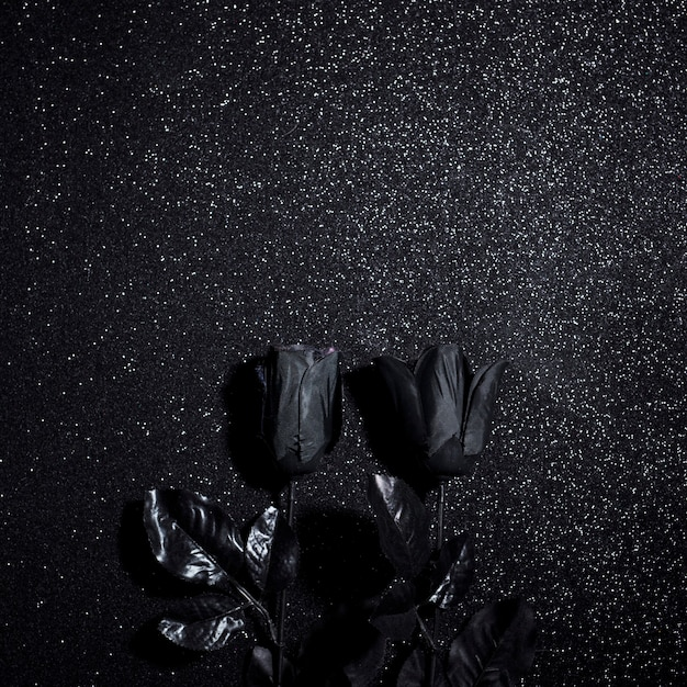 Black flowers for halloween night