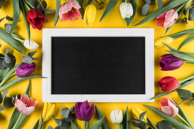 Black frame with white border surrounded with colorful tulips