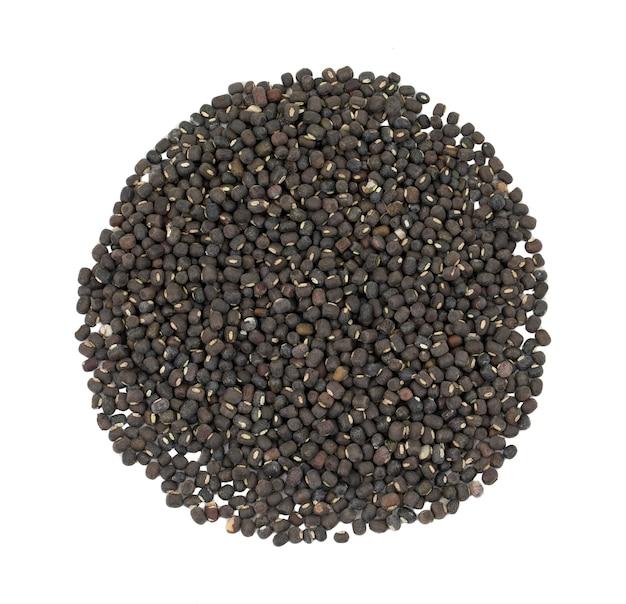 Black gram or black mung on white background