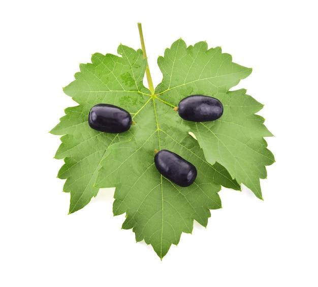 Black grape isolated