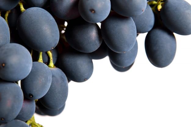 Черный виноград с каплей воды изолированы