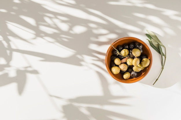 Black and green olives in bowl with twig on white background