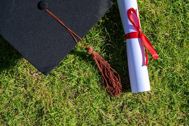 The black hat and certificate of university graduates is placed on green leaves.