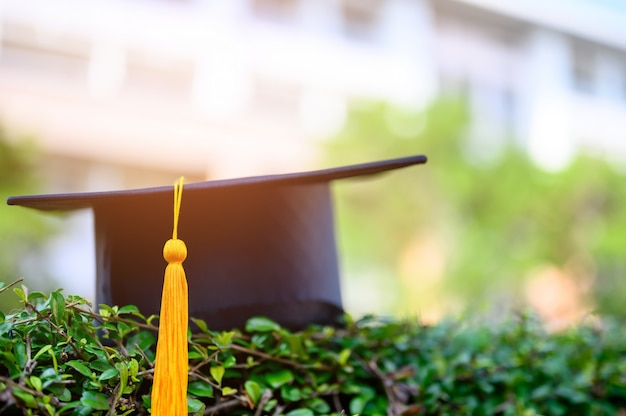 The black hat of university graduates is placed on green leaves.