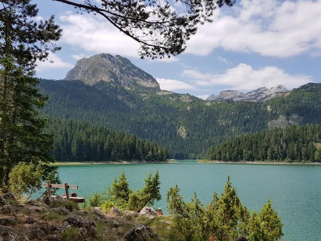 モンテネグロの日光の下で緑に覆われた岩に囲まれた黒い湖