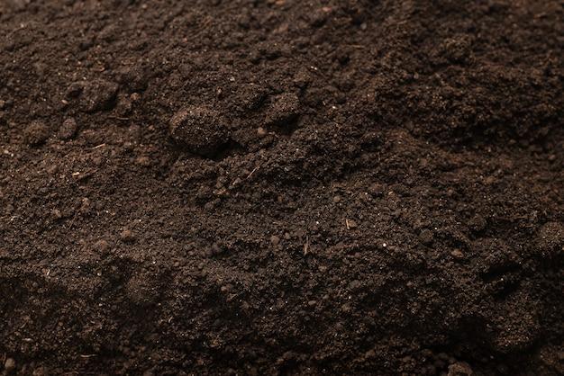 Черная земля для фона растений. вид сверху. схема заземления.