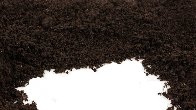 植物の背景の黒い土地。上面図。