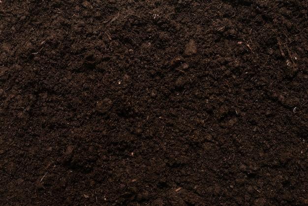 Черная земля для фона растений. вид сверху.