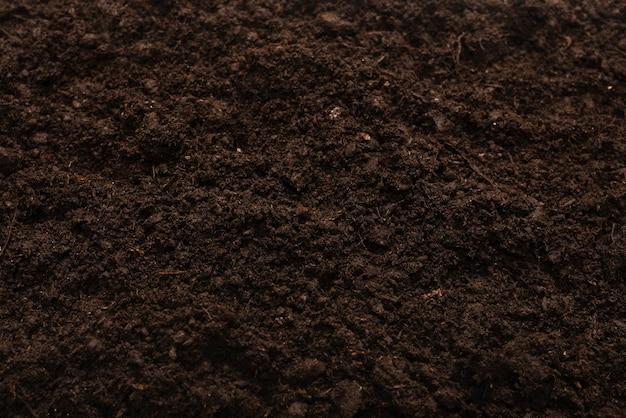 Черная земля для фона растений. вид сверху. Premium Фотографии