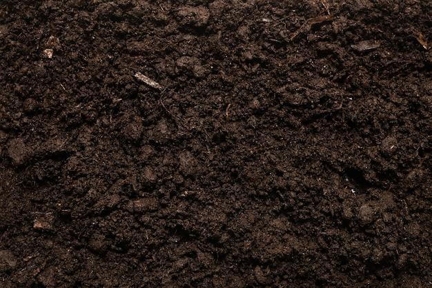 Черная земля для фона растений.