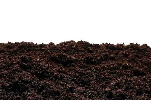 흰색 배경에 고립 된 식물에 대 한 검은 땅.