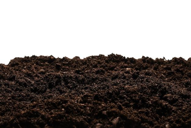 Черная земля для растений изолирована.