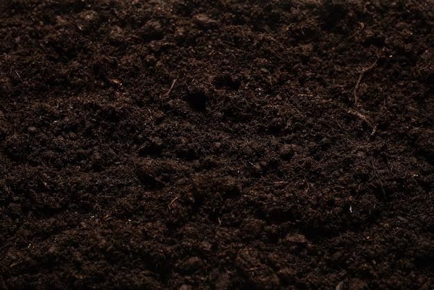 Черная земля для поверхности растений. вид сверху.
