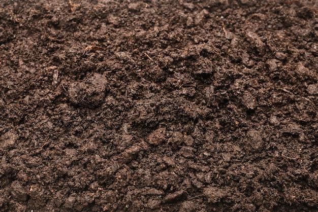 Черная земля для стены растений. вид сверху.