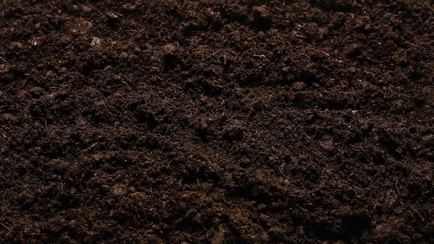 植物のための黒い土地