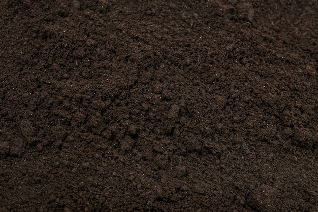 Black land for plant background.