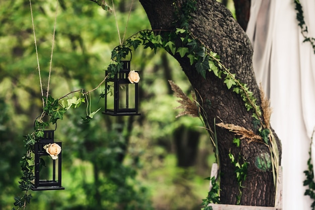 Black lanterns, decorated with flowers and ivy twigs, hang on an oak tree.