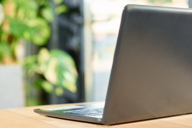 Black laptop standing on wooden table with green plant