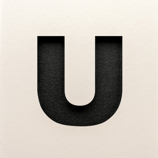 Black leather font design, abstract alphabet font, realistic typography - u