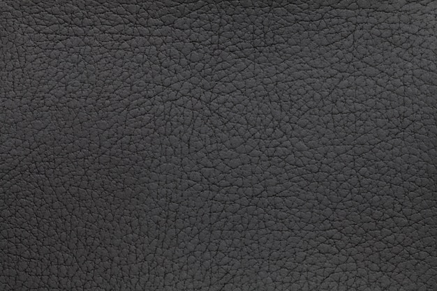 Black leather texture background. closeup photo. reptile skin.