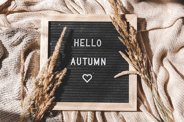 Black letter board with text phrase hello autumn and dried grass lying on white knitted sweater