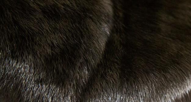 白い背景で隔離の黒いミンクのコート。贅沢な天然毛皮。フード付きファーコート