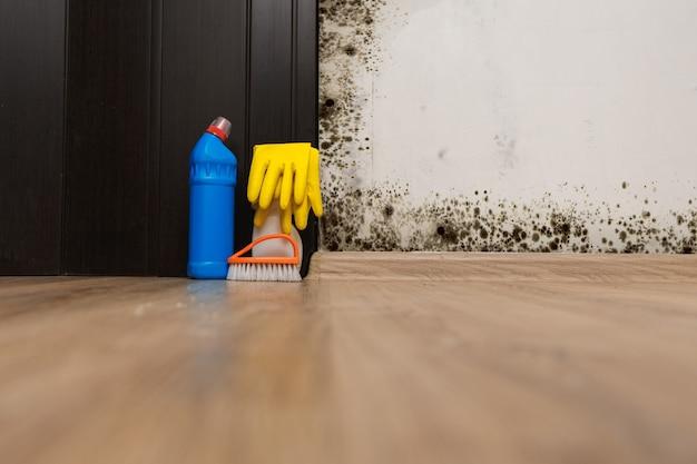 방 벽에 검은 곰팡이. 곰팡이 제거 준비.