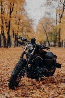 Black motorbike in autumn park