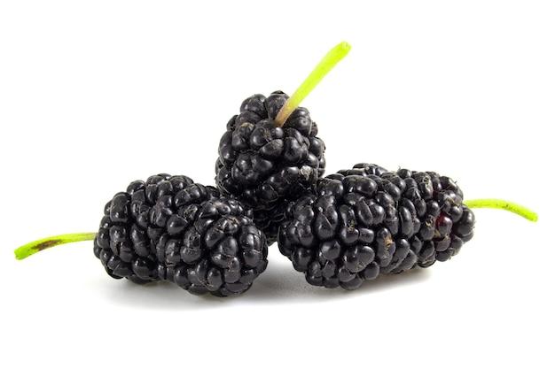 검은 뽕나무 과일 흰색 배경에 고립입니다. 딸기를 닫습니다.