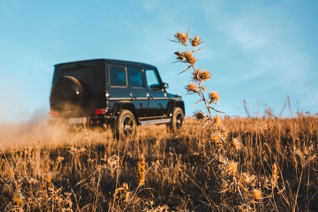 Black offroader in the fields with blue sky