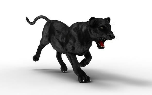 黒のパンサーは、白い背景、黒い虎、3dイラスト、3dレンダリングで分離