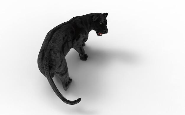 黒いパンサーは、白い背景、黒い虎、3dイラスト、3dレンダリングで分離