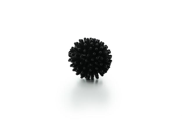 Черный мяч для домашних животных, изолированные на белом фоне