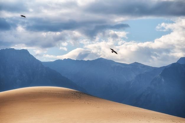 黒いフォロンが砂漠の上を飛んでいます。背景の山。