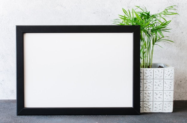 Black photo frame and beautiful plant in concrete pot. scandinavian style room interior.