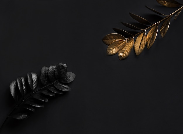 Black plants and golden plants. floral natural wide horizontal decoration with top view and copy space.