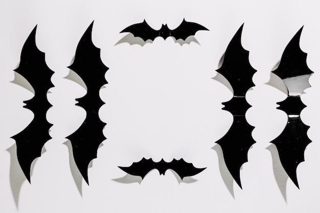 Black plastic halloween bats laid in order