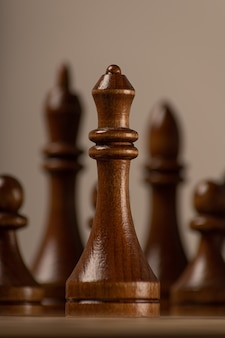 Black queen on the background of the rest of the chess pieces