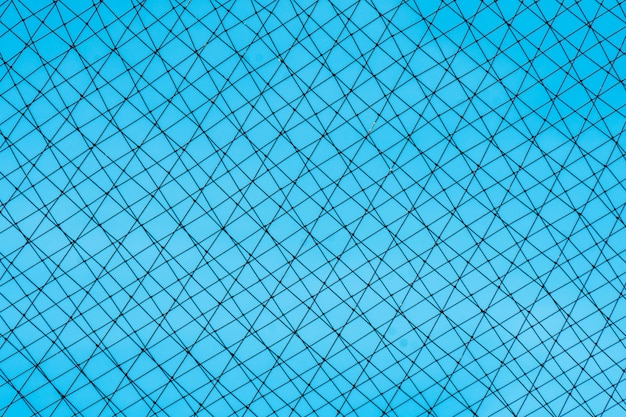 A black rope net stretched over the background, behind the blue sky.