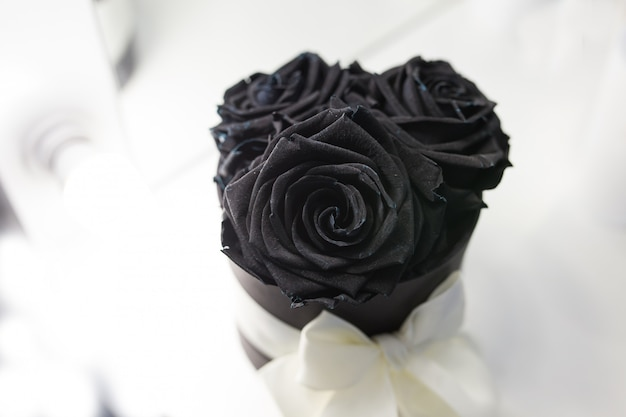 Black roses in a box with a white bow on a white background