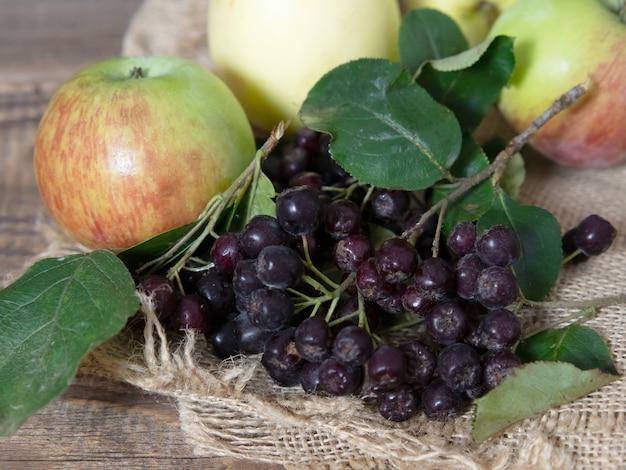 Black rowan and apples on a wooden table
