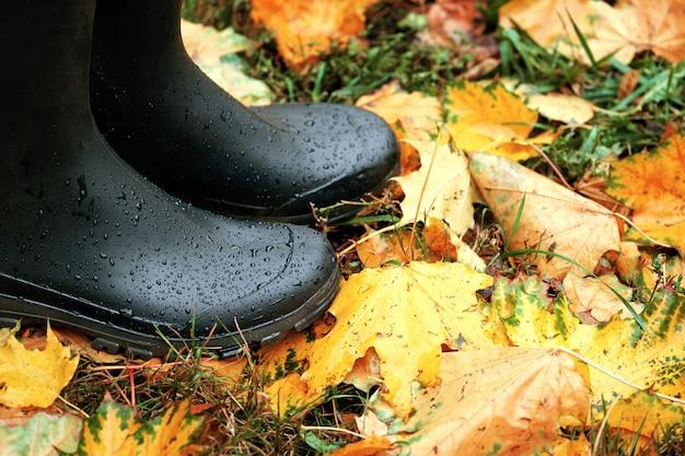 Черные резиновые сапоги на опавших оранжевых кленовых листьях концепция осенней дождливой погоды
