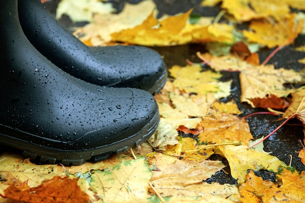 가을에 도시에서 떨어진 단풍으로 덮여 아스팔트 도로에 서있는 검은 고무 부츠.