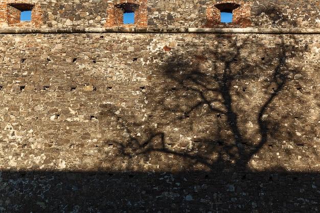 要塞の古い石の壁に木の黒い影