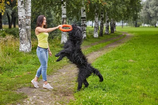검은 털복숭이 브리아 드는 공공 공원에서 걷는 동안 장난감의 도움으로 젊은 여성과 훈련을 받았습니다.