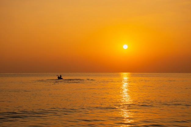 Black silhouette, beautiful sunset